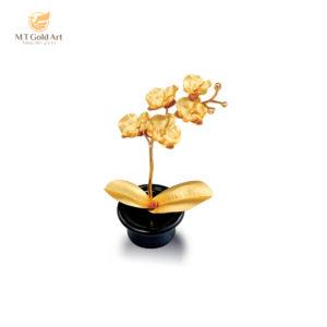 """Cây phong lan – món quà tặng """"đánh gục"""" người mua bằng sự tinh tế hiếm có"""